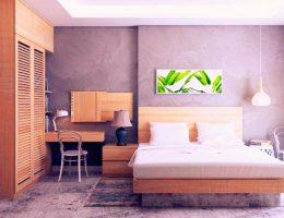 Cuarentena y renovación de espacios